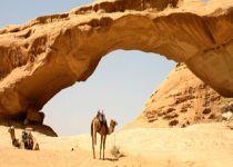 Jordan-Wadi-Rum-camels